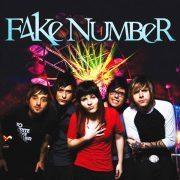 Fake Number